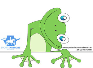 Mirror Frog Logo